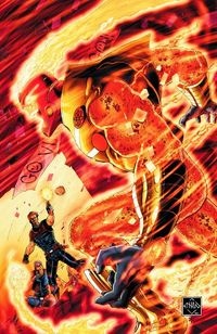 Fury of Firestorm Gail Simone