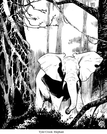 Tyler Crook: Elephant.